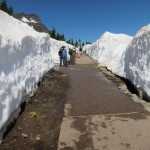 שלג בלוגאן פאס