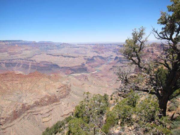 פארק לאומי הגרנד קניון