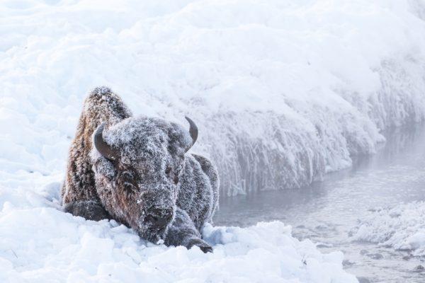 """איך להשמר מפני מזג אוויר קיצוני בארה""""ב"""