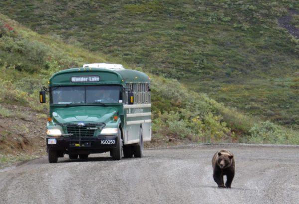 סיכום אלסקה: דנאלי, טולקטינה ואנקורג'